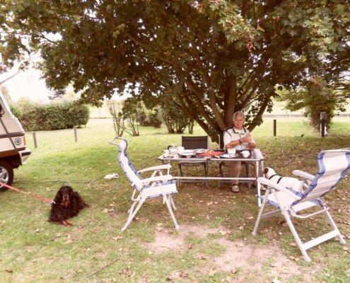 zeigt eine Frau und 2 Hunde beim Camping