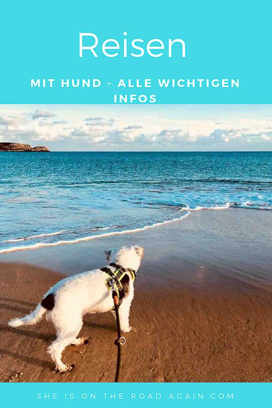 Infos zu Reisezielen mit Hund ✔ Einreisebestimmungen ✔ wichtige Impfungen ✔ Homöopathie auf Reisen für Hunde ✔ Lieblingsländer ❤ Traumstrände ❤ Traumurlaub mit Hund ❤