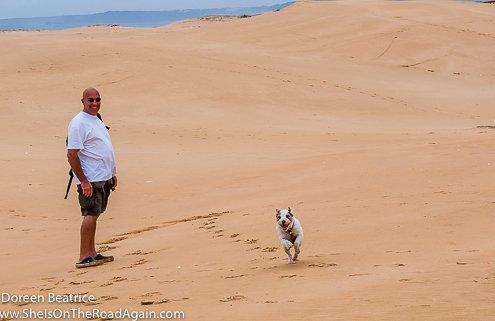 zeigt Mann und Hund am Strand
