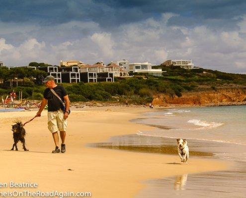 zeigt einen Mann mit 2 alten Hunden am Strand