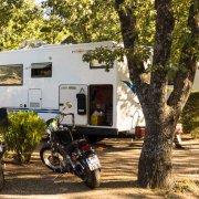 zeigt Wohnmobilplätze schattig unter Bäumen - Camping la Source