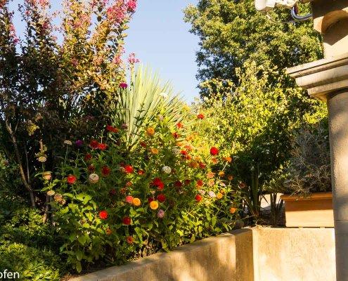 zeigt ein paar Blumen an einer Hausmauer