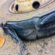Reifenpanne in Frankreich