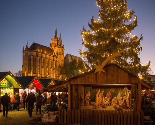 Weihnachtsmarkt Erfurt © Matthias F. Schmidt