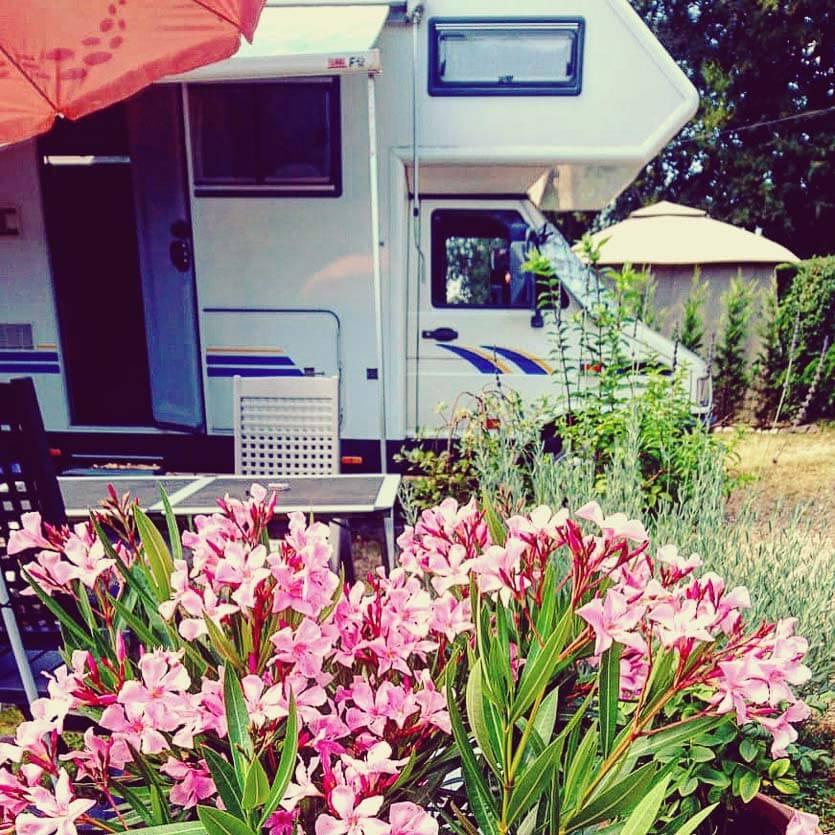 zeigt ein Wohnmobil und Oleander