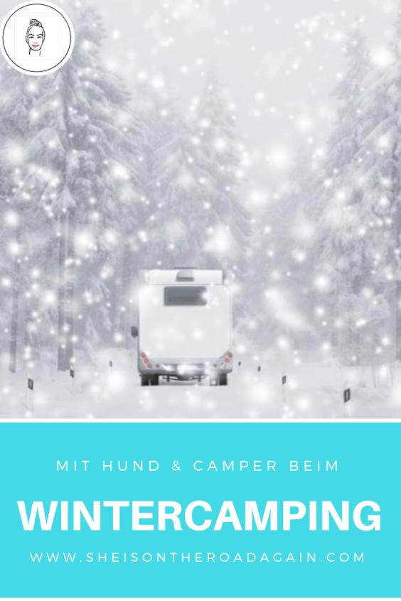 Wintercamping mit Hund ❤ wenn das Camper Leben drinnen stattfindet
