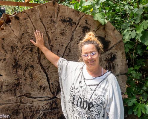 zeigt einen Mammutbaum Durchschnitt Sequoia Farm Kaldenkirchen