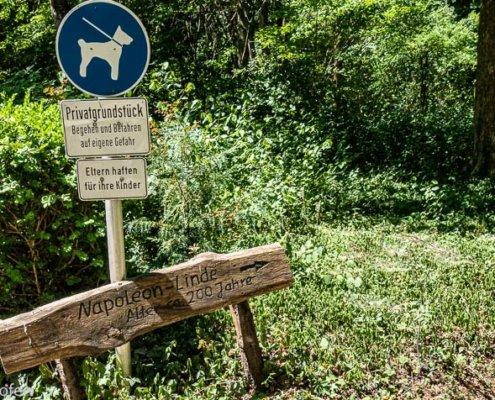 Hunde erlaubt in der Sequoia Farm Kaldenkirchen