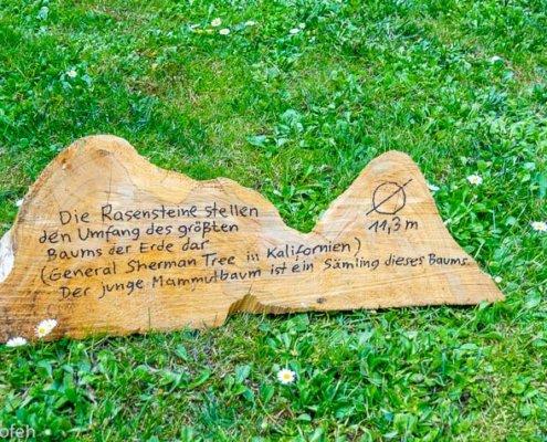 zeigt den Rasenstein im Sequoia Park Kaldenkirchen