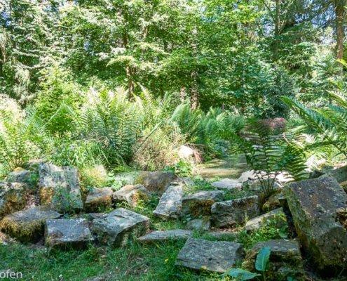 zeigt einen kleinen See im Sequoia Park Kaldenkirchen