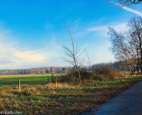 blauer Himmel über einem freien Feld