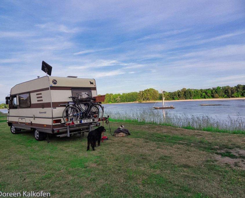 Wohnmobil und 2 Hunde am Flußufer