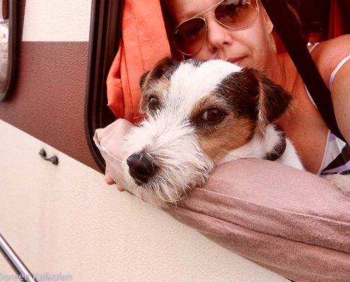 Frau und Hund schauen aus dem Wohnmobil-Fenster