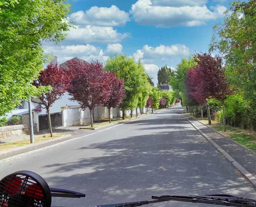 Blick aus dem Wohnmobil auf eine schmale Strasse