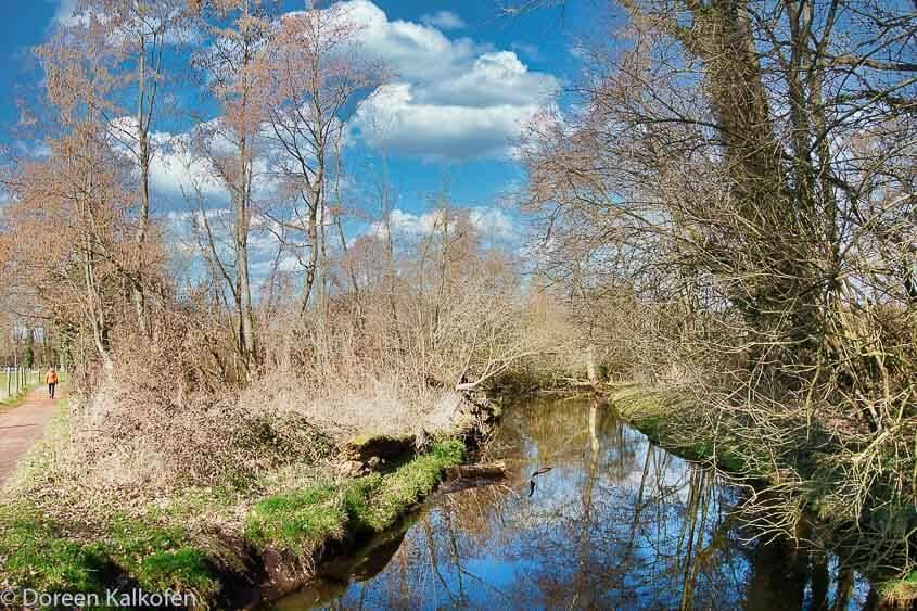 Grüne Natur und kleiner Fluss